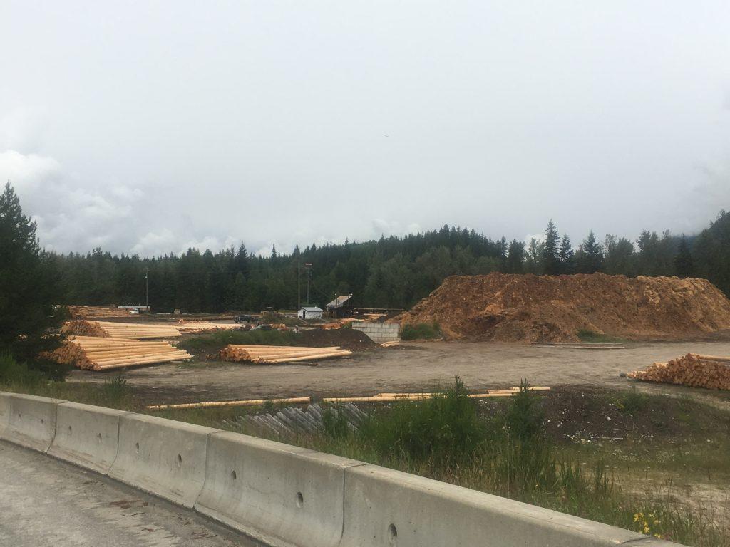 Ah oui: un peu partout au BC, les rivières et les lacs sont bourrés de pitounes de bois. Si l'industrie du bois est morte au Québec, ici, c'est vivant en crime!